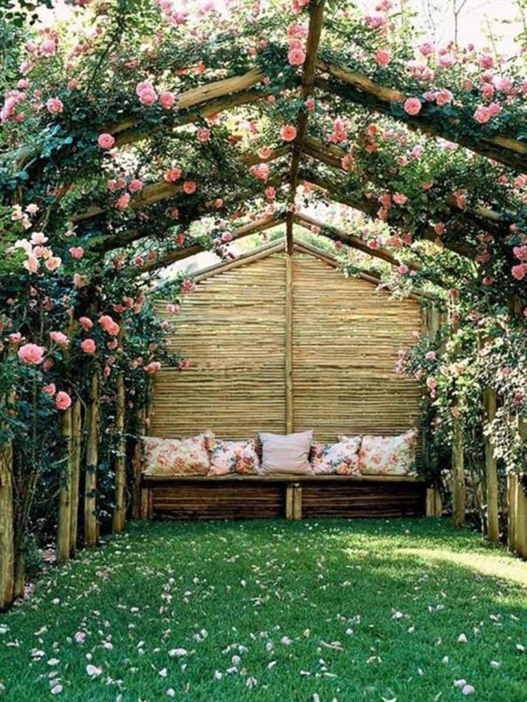 růže v zahradním přístřešku