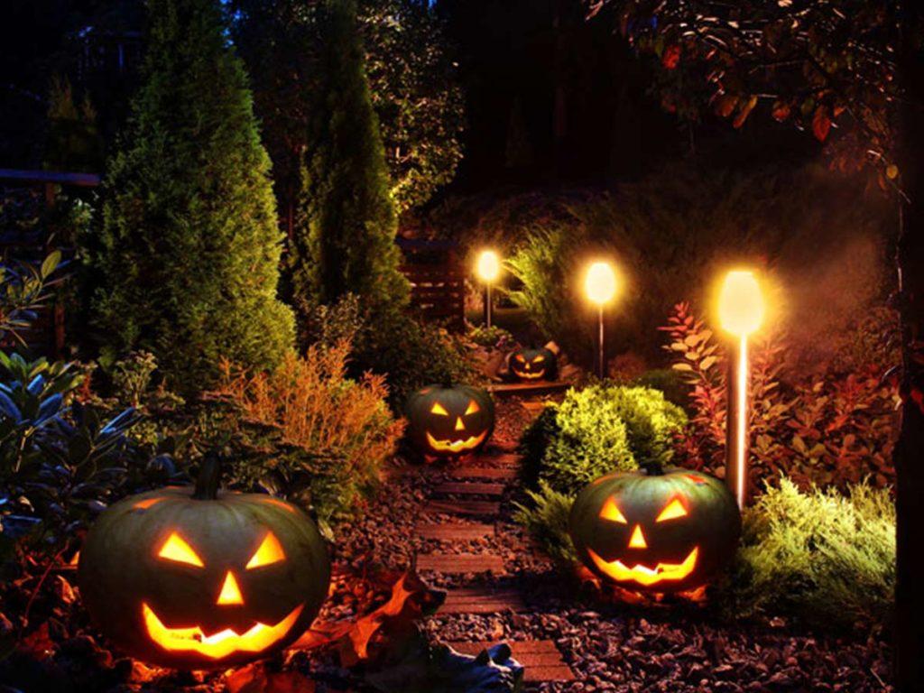 cestička zahradou s vyřezanými tykvěmi na Halloween
