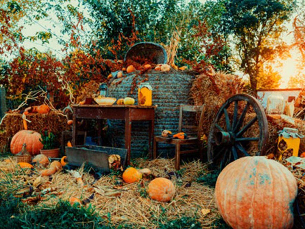 halloweenské tykve