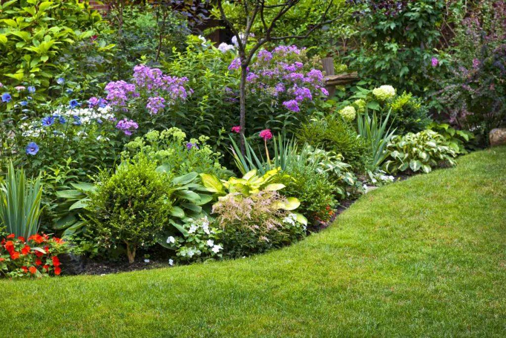 zahrada s květinami