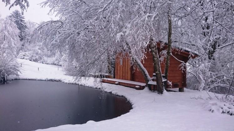 Sauna pod šumavskou lípou