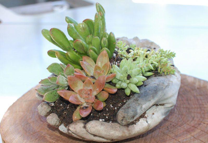 betonový květník ve tvaru spojených ruk