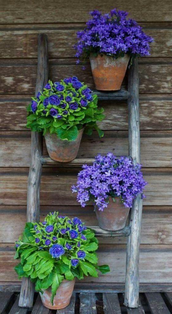 řebřík pro květníky