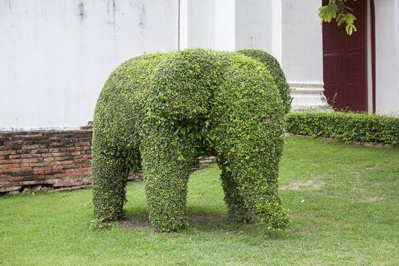 slon vytvarován ze křoví